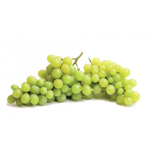 Saszla szőlő